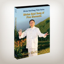 Divine Soul Song of Five Elements (DVD)